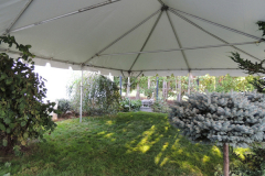 Tent-Unique-House-DSCN0693