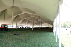 Tent-Large-UMASS-Dartmouth-1-DSCN0078
