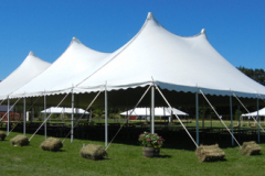 Pole-Tents